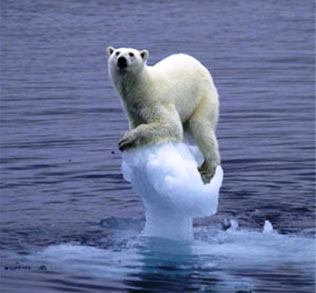 What caused the ice age
