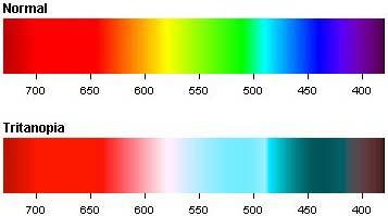 Color Vision  Photons  Monochromatic Light  White Light